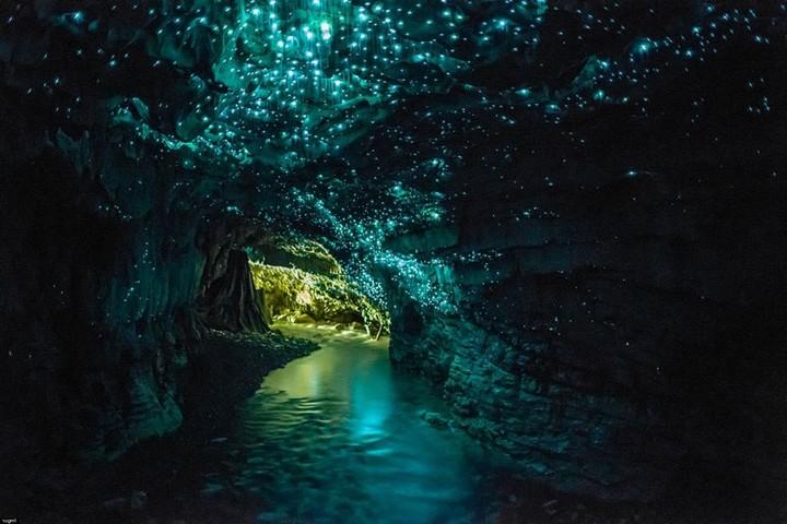 Waitmo-barlang