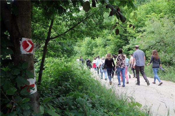 Szívbetegek rehabilitációját is segítő tanösvényt avattak Miskolcon