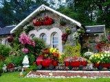 10 csodaszép virágba borult ház (Fotók)