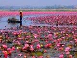Fotókon 5 különleges és meseszép tó a nagyvilágból