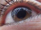 Úszkáló foltok a szem előtt - Mitől alakul ki? Mit tehetsz ellene? Szemész szakorvos válaszol