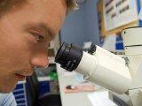 Prosztatarák: ekkora az esély a betegségre, ha több családtagnál is előfordult! Svéd kutatási eredmény