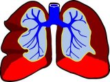 Több mint félmillió magyar szenved ebben a súlyos betegségben, de a többség nem is tud róla! - A COPD okai, tünetei, vizsgálata, kezelése, megelőzése