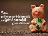15 vidám szilveszteri sms és újévi köszöntő a Facebookra - Küldd el barátaidnak, hogy jól induljon az új év!