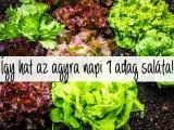 Ezt teszi az agyaddal, ha napi 1 adag zöldsalátát megeszel! - Meglepő eredményt hozott egy friss kutatás