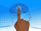 Úgy működött az agyuk, mint egy húszévesnek! - Így sikerült megfiatalítani idős emberek memóriáját