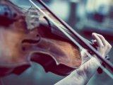 Online komolyzenei koncertek: Két élő közvetítésen is hallhatók csütörtökön a Nemzeti Filharmonikusok