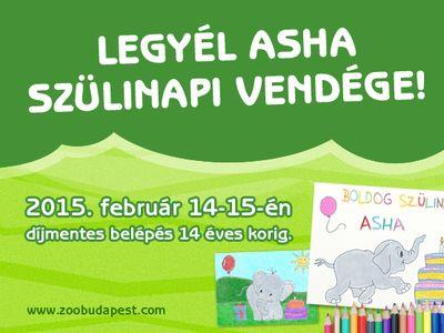 Gyerekeknek ingyenes a belépés az Állatkertbe ezen a hétvégén!
