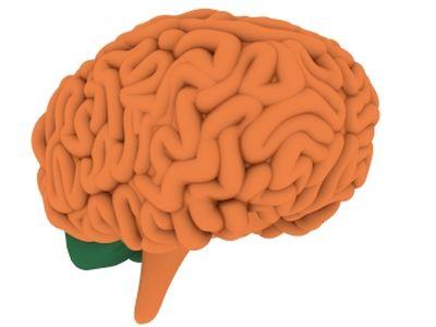 Alzheimer-kór: emberről emberre terjedhet a betegség? Milyen tünetekkel jár az Alzheimer-kór?