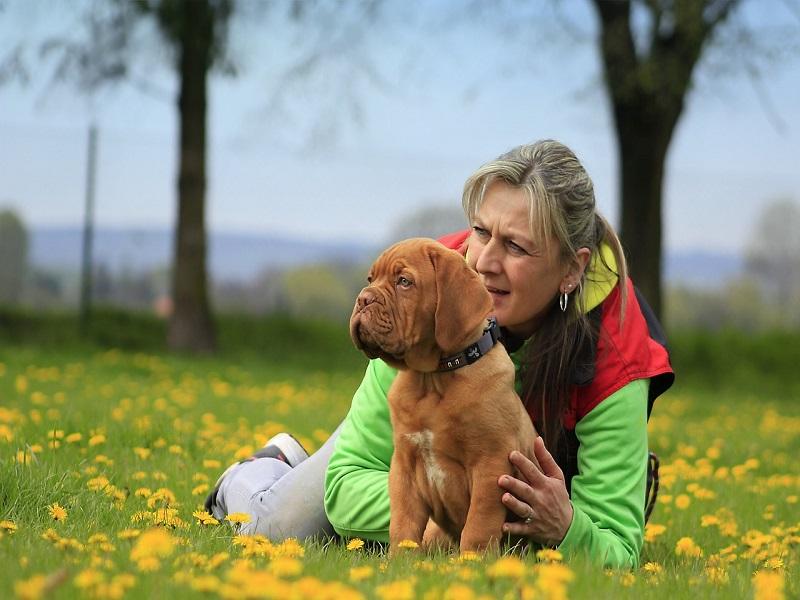 Ilyen hatással van az emberre a rendszeres kutyasétáltatás! Érdekes összefüggést fedeztek fel a kutatók