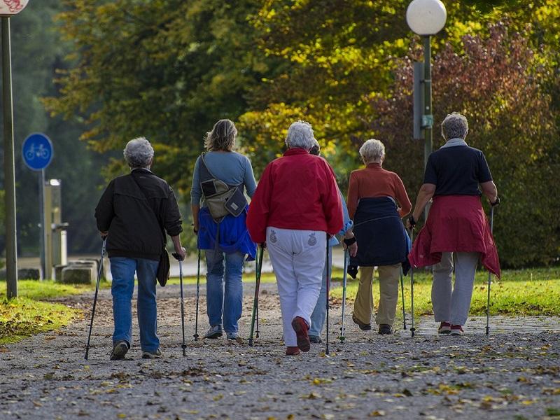 Botra fel!: Ingyenes nordic walking oktatás és séta az ország 20 városában - Mutatjuk a csatlakozott helyek listáját!