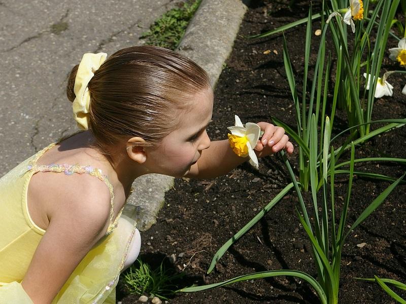 Mérgező növények listája: 119 mérgező növény a lakásban, kertben, játszótéren - Mit tegyél, ha a gyerek eszik belőle?