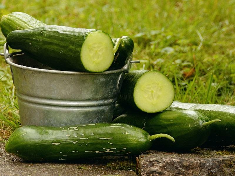 Magas vérnyomás, ízületi fájdalmak, fejfájás, vesebajok ellen is jó - 12 ok, amiért egyél gyakran uborkát!