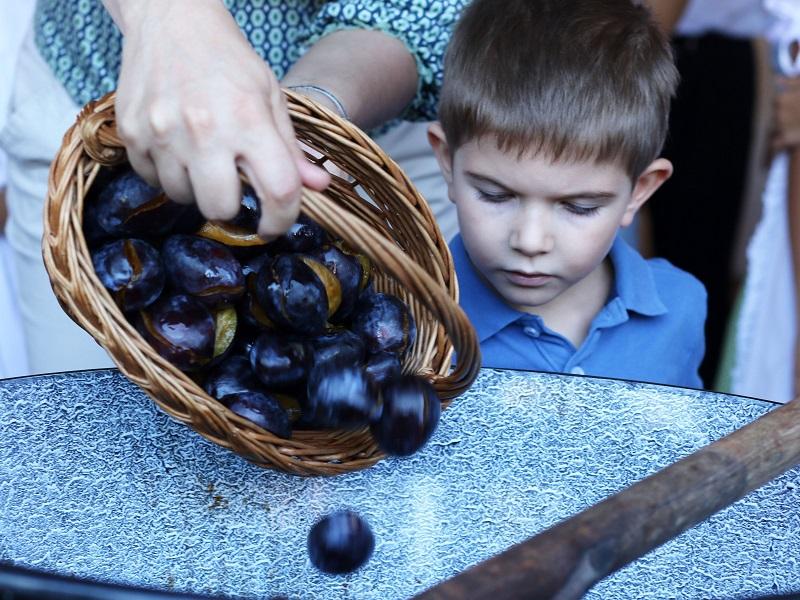 Többféle szilvából főzték a Kárpát-medence lekvárját, így készült! - Milyen betegségek ellen jó a szilva?
